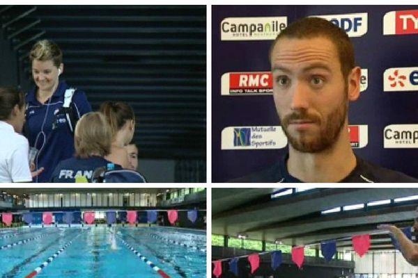 Les nageurs picards se préparent pour les championnats du monde de natation
