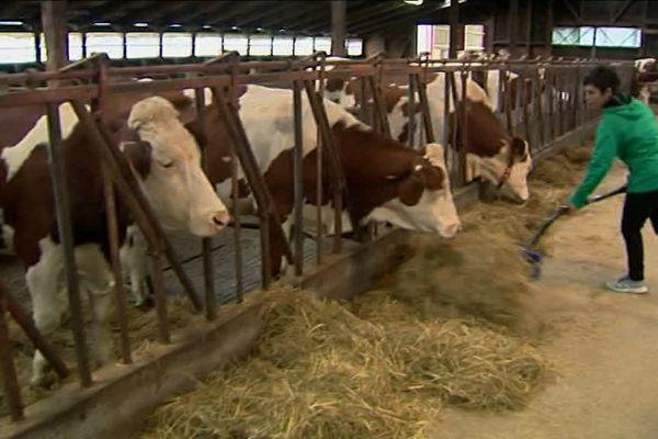 30% des agriculteurs ne peuvent vivre de leur travail. Ils touchent à peine 350 euros par mois.