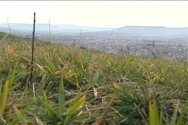 """Les côtes de Clermont sont désormais classées """"espace naturel sensible"""""""