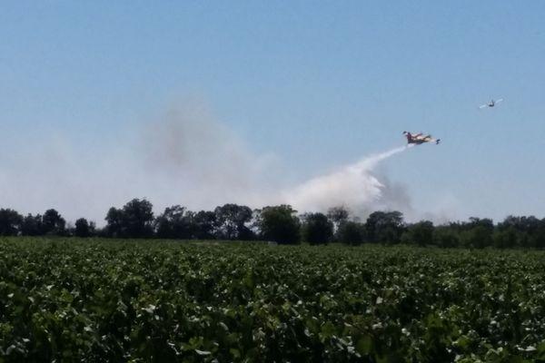 Le feu de garrigue à Bessan, dans l'Hérault - 15 juillet 2017 /