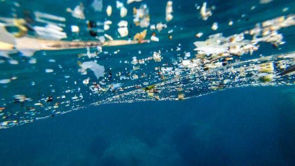 Plastique sur le littoral corse