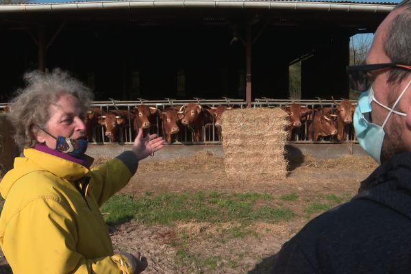 A Marigny, dans les Deux-Sèvres, Valérie Bost présente ses vaches Limousine aux visiteurs.