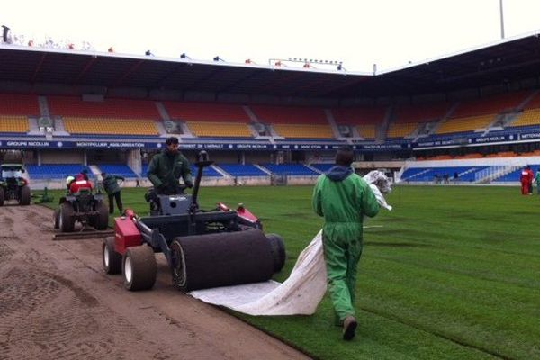La nouvelle pelouse du stade de La Mosson va coûter 400 000 euros