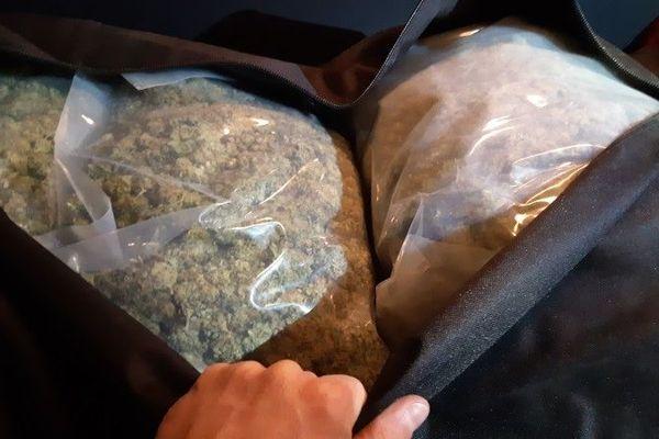 De l'herbe de cannabis (photo d'archives).