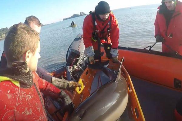 Le sauvetage des deux dauphins a duré deux bonnes heures