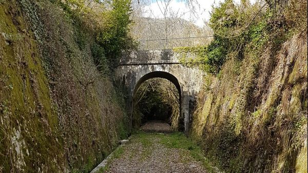 Tunnel du chemin de fer de Provence que la commune de Saint-Jeannet voudrait réaménager en piste cyclable.