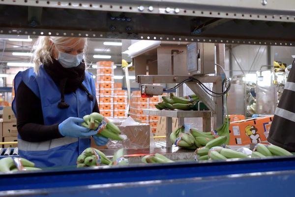 Les bananes font partie des produits de première nécessité.