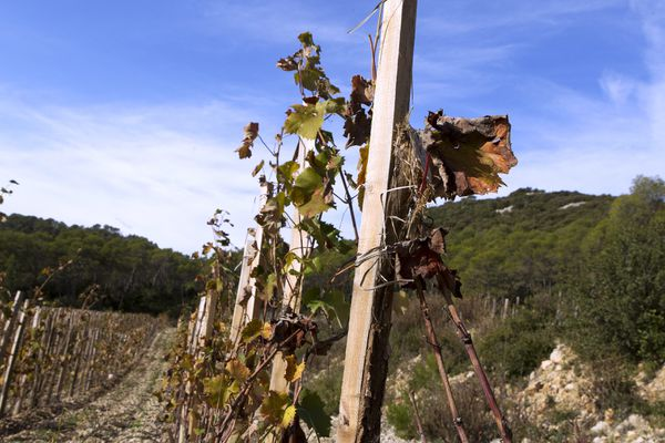 L'été s'annonce sec en Occitanie.