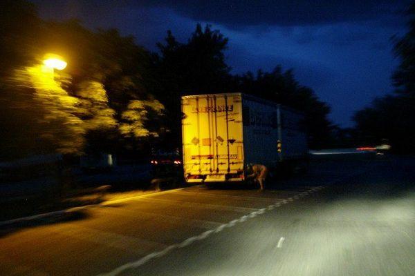 Les chauffeurs passaient chaque soir dans le nord de Paris et en Seine-Saint-Denis pour prendre en charge des candidats au départ et les conduire à la nuit tombée sur les aires d'autoroutes de Bourgogne.