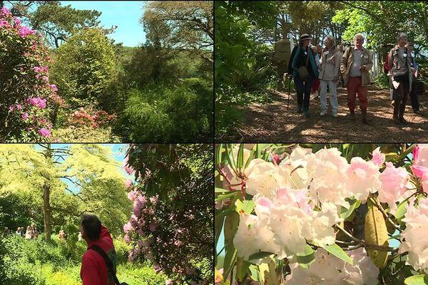 Le jardin Favier, est unique en France. Longtemps fermé au public, il peut désormais être visité le dimanche