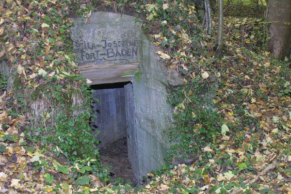 En octobre 2003, quatre bébés sont retrouvés mort dans des sacs-poubelle dans la forêt de Galfingue dans le Haut-Rhin.