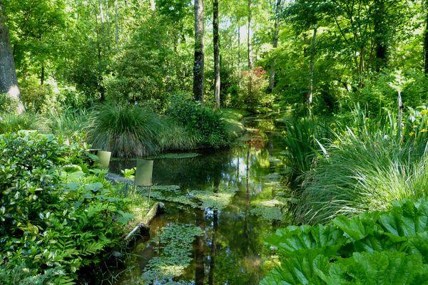 Au printemps, le parc est embelli des floraisons de plantes bulbeuses et vivaces