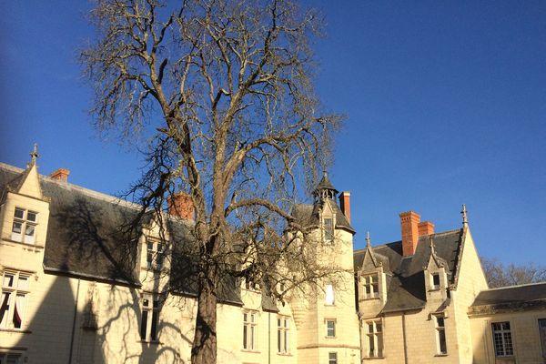 Le château de Dissay entame une restauration