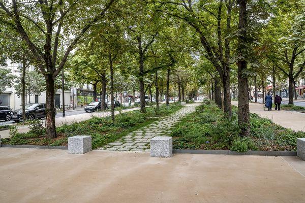 Le projet de transformation du boulevard Pasteur