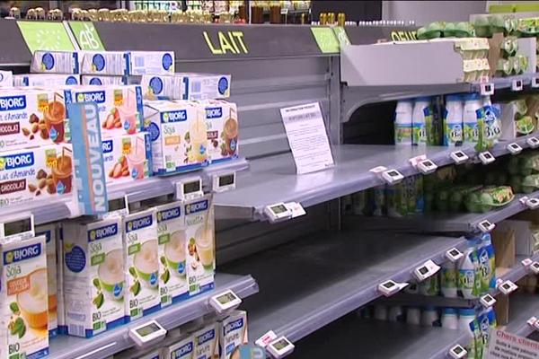 La mauvaise météo de ces derniers mois explique l'actuelle rupture de stock de lait biologique dans les grandes surfaces.