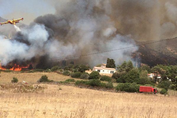 Un Canadair intervient sur un incendie, commune d'Appietto (Corse du Sud), le mercredi 2 août 2017.
