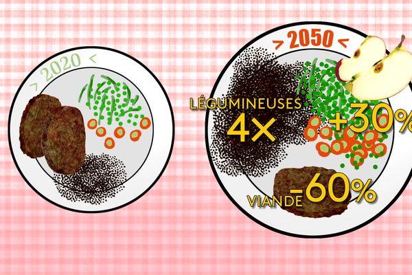 Dans l'assiette 2050 il faudrait réduire la viande considérablement !
