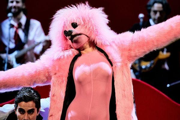 Roxie, la chienne de Madame Pink