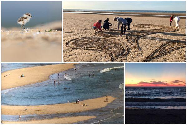 Quand les plages de Normandie nous dévoilent leurs trésors cachés