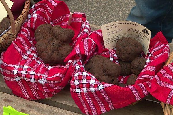 Les trufficulteurs du Quercy et de la Dordogne ont présenté des paniers plutôt bien fournis pour ce dernier marche de l'année 2019.
