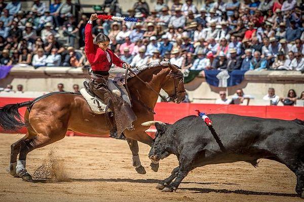 La feria des vendanges se tiendra du 16 au 19 septembre prochains à Nîmes. Six spectacles dont quatre corridas, une à cheval et une novillada sont programmés. Léa Vicens, (photo) sera présente.