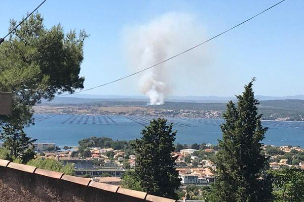 L'incendie qui se situe près de l'autoroute A9, à Loupian, dégage un gros panache de fumée - 7 juillet 2020.