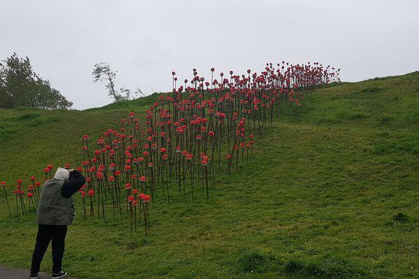 Installation dans le jardin du LAAC à Dunkerque