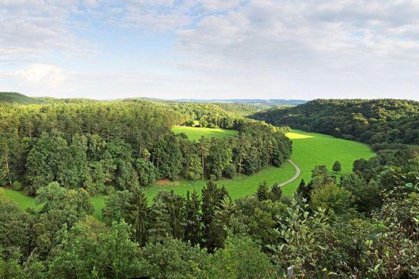 Depuis sa création en 1970, le Parc Animalier concilie activité touristique et préservation du patrimoine naturel.