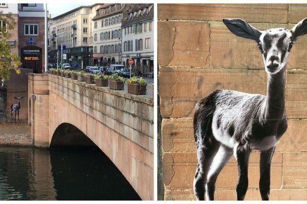 L'oeuvre de Sonac, sur les quais de Strasbourg