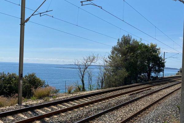 Le trafic SNCF s'annonce perturbé à la fois sur le réseau grande ligne que pour les TER.