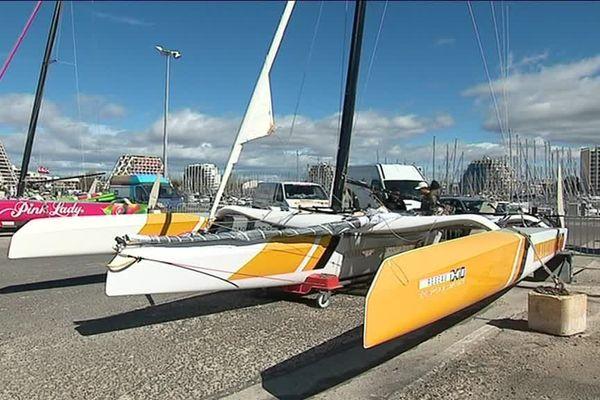 A Montpellier, dans l'Hérault, de nombreux voiliers sont sur le port, les voileux se préparent déjà pour les JO - mars 2019