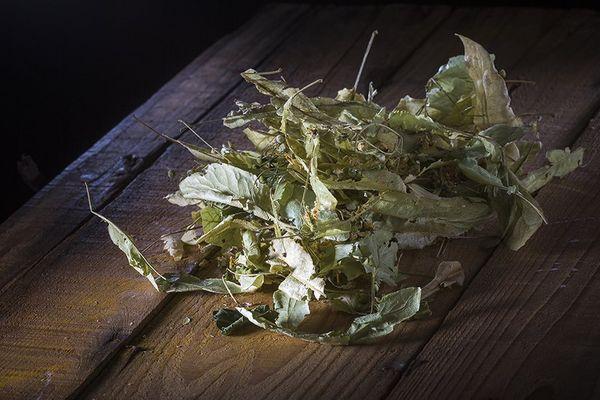 Le tilleul est une plante qui favorise la sérénité et permet de trouver le sommeil