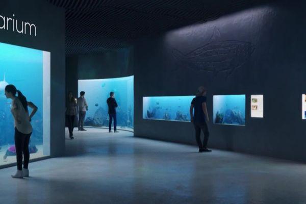 Préfiguration d'une des salles du futur centre océanographique de Dieppe