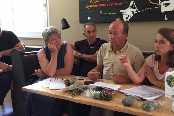 13/06/2017 - Conférence de presse du syndicat AOC Oliu di Corsica pour demander l'arrêt de l'importation de végétaux en Corse en raison de la Xylella.