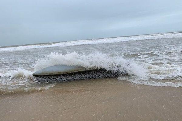 L'objet en métal, de plus de deux mètres de long, n'est visible qu'à marée basse