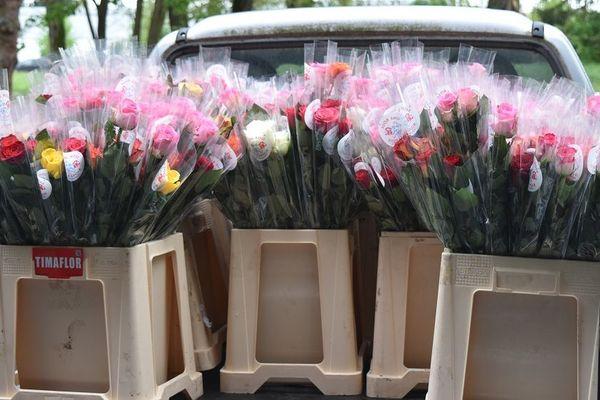 Les roses, placées dans des seaux, sont transportées par des 4X4 qui les emmènent dans un autre hangar, pour qu'elles soient délivrées ce week-end aux motards.