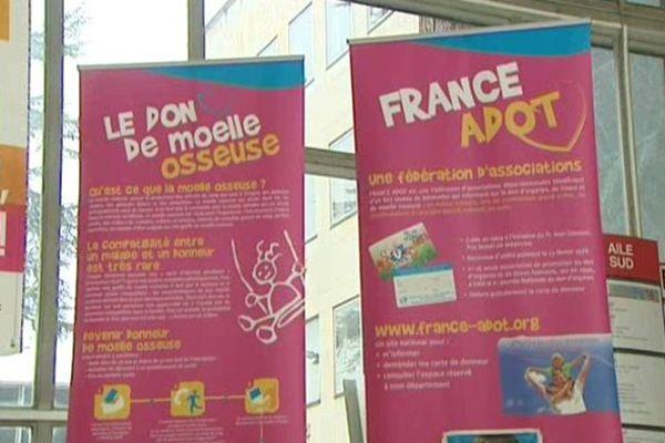 La France a besoin de donneurs de moelle osseuse