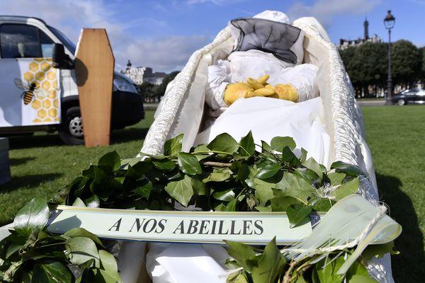 Des apiculteurs se sont mobilisés contre la disparition des abeilles et alerter l'opinion publique et les politiques sur la situation dramatique des abeilles. Ils s'étaient donnés rendez-vous Place des Invalides a Paris le 7 juin 2018.