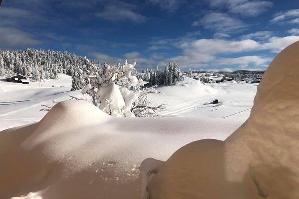 Dans la forêt du massacre, la neige atteint 1,75 mètre de hauteur