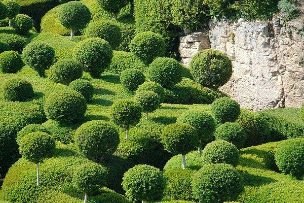 Jardins de Marqueyssac - Dordogne