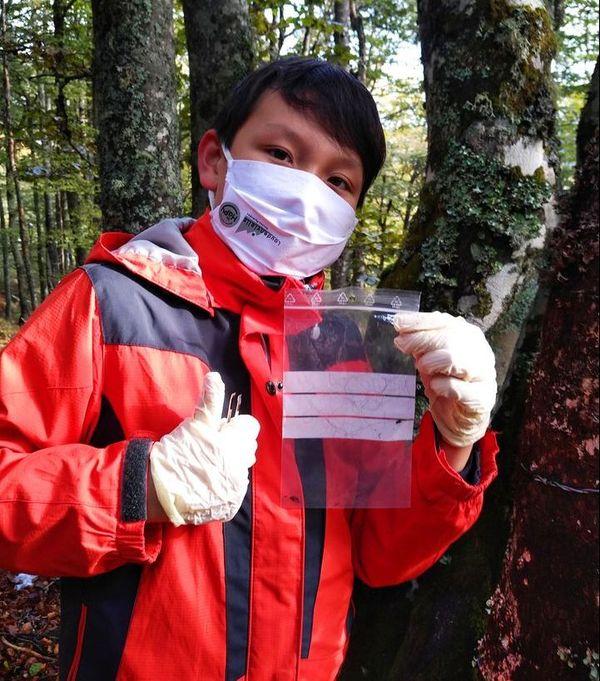Les prélèvements de traces de l'ours seront envoyés au Réseau Ours Brun