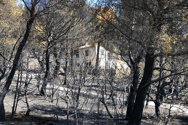 Incendie Vaucluse : le feu a ravagé 240 hectares dans la commune de Beaumes-de-Venise et ses alentours.