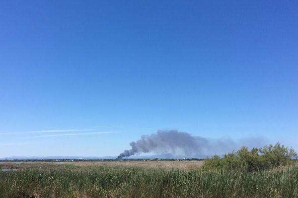 Fumée de l'incendie d'un entrepôt de Mudaison dans l'Hérault - 13 juin 2019.