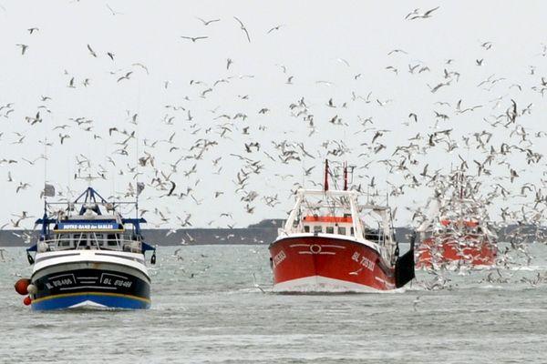 Les pêcheurs boulonnais s'inquiètent de l'avenir de leur activité en cas d'un Brexit sans accord.