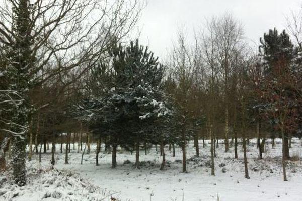 La Bretagne Nord se réveille en blanc ce matin