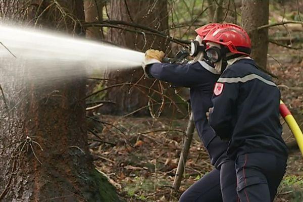 Des pompiers luttent contre un feu en forêt de Soultz (68), en Août 2018