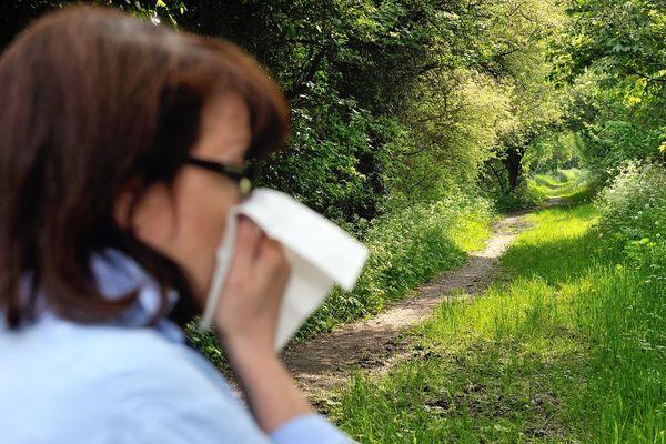 Démangeaisons, nez bouché, écoulement, éternuements, yeux qui rougissent, larmoiement... Les allergies aux pollens sont caractérisées par plusieurs symptômes (illustration).