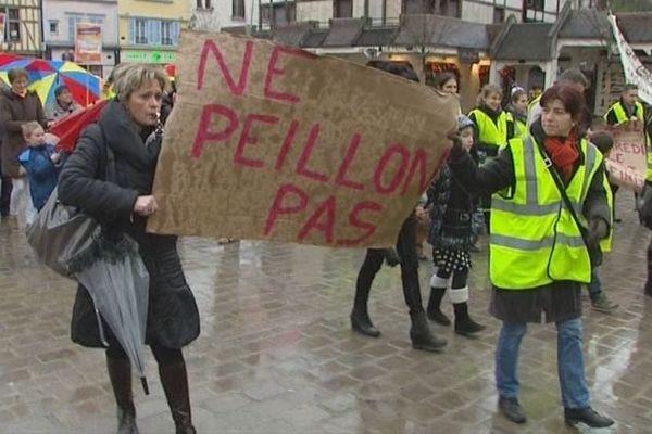 Une centaine de personnes a manifesté ce sanedi 8 février 2014 à Troyes (Aube)