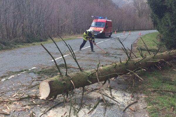 Un arbre est tombé sur la route à Laifour dans les Ardennes ce 10 mars