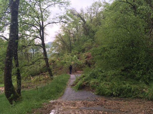 Une coulée de boue et de nombreux arbres bloquent l'accès au village d'Irazein.